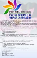 湖北新经济宣传活动